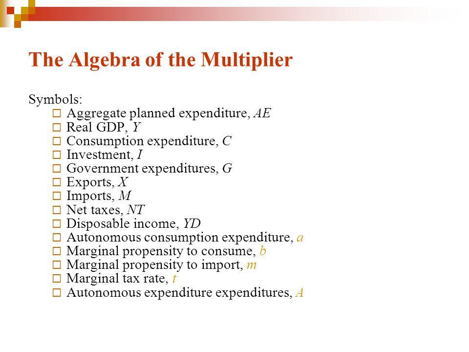 The Algebra of the Multiplier