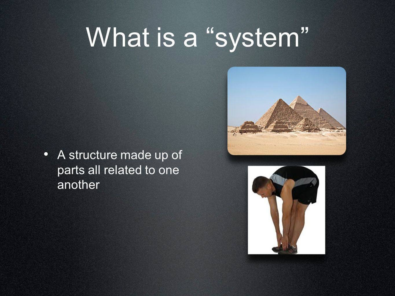 What is a system A structure made up of parts all related to one another