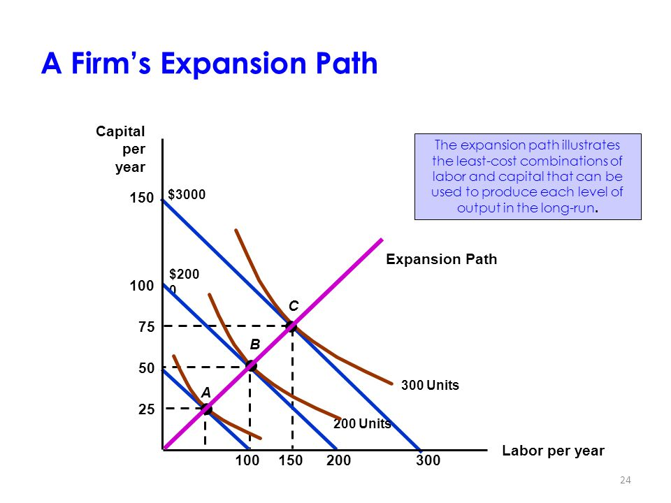 A Firm's Expansion Path