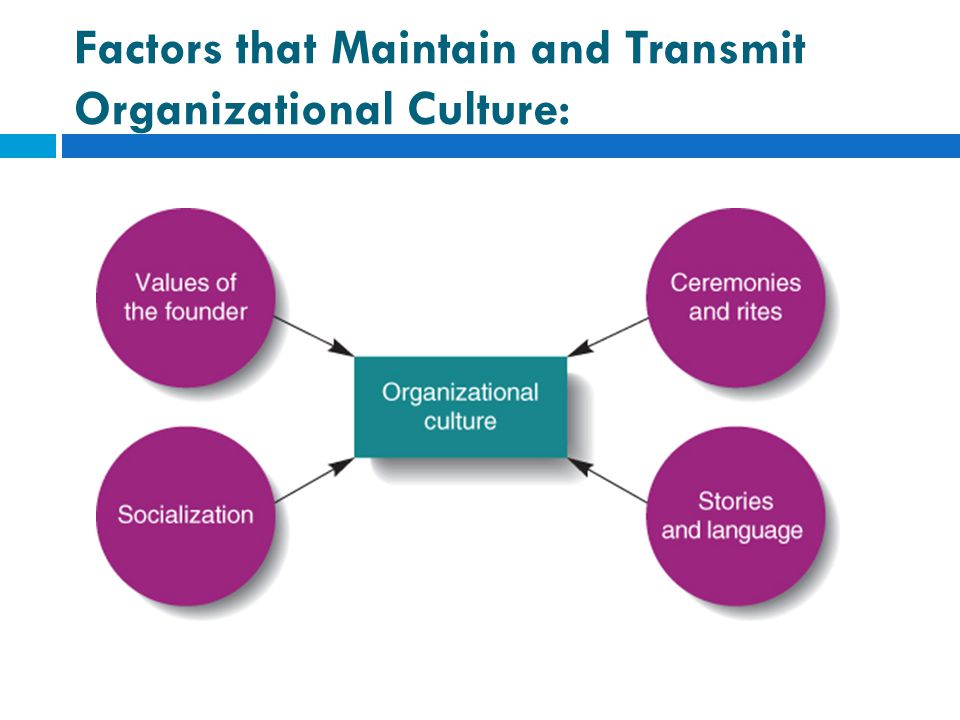 Factors that Maintain and Transmit Organizational Culture: