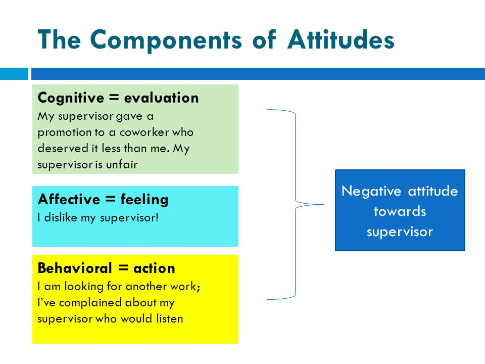 The Components of Attitudes
