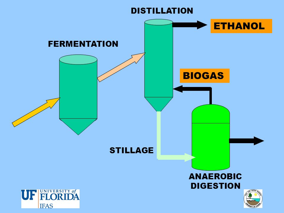 DISTILLATION ETHANOL FERMENTATION BIOGAS STILLAGE ANAEROBIC DIGESTION