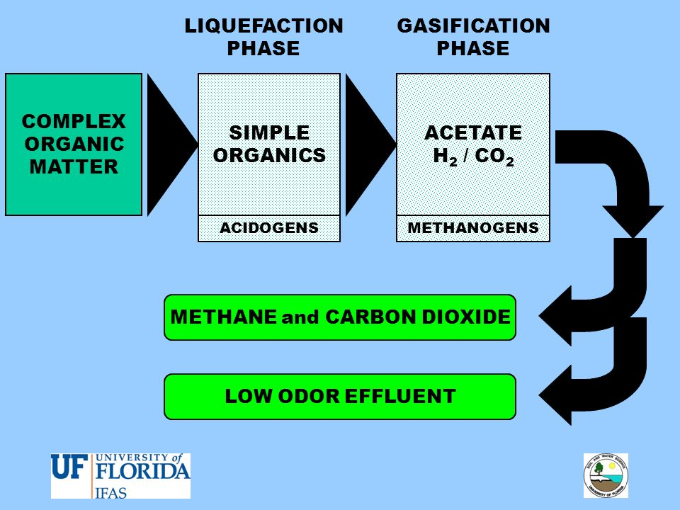 METHANE and CARBON DIOXIDE