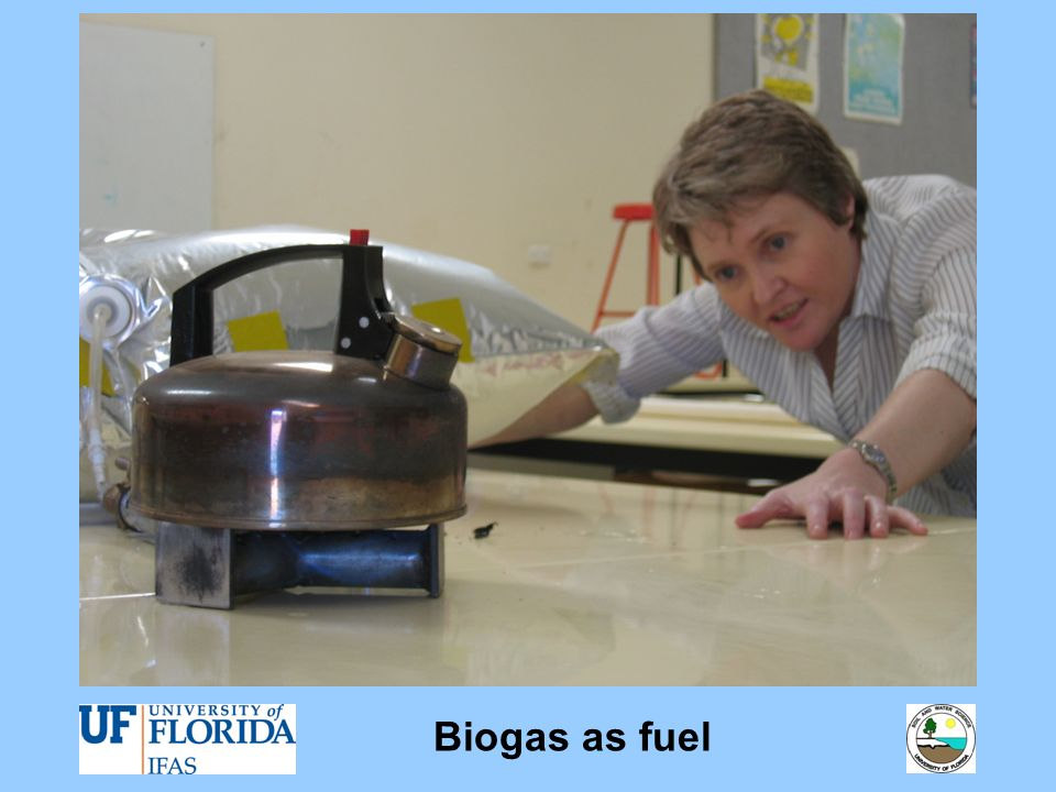 Biogas as fuel
