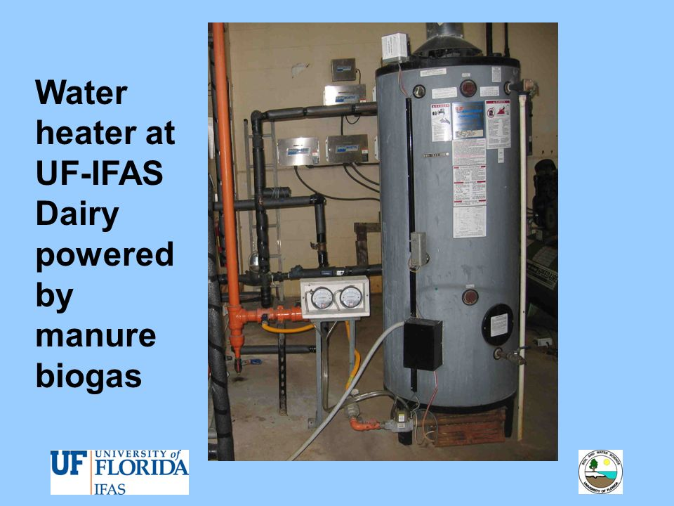 Water heater at UF-IFAS Dairy powered by manure biogas