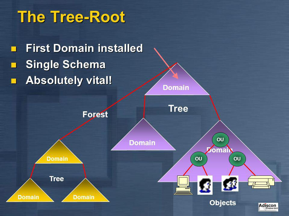 The Tree-Root First Domain installed Single Schema Absolutely vital!