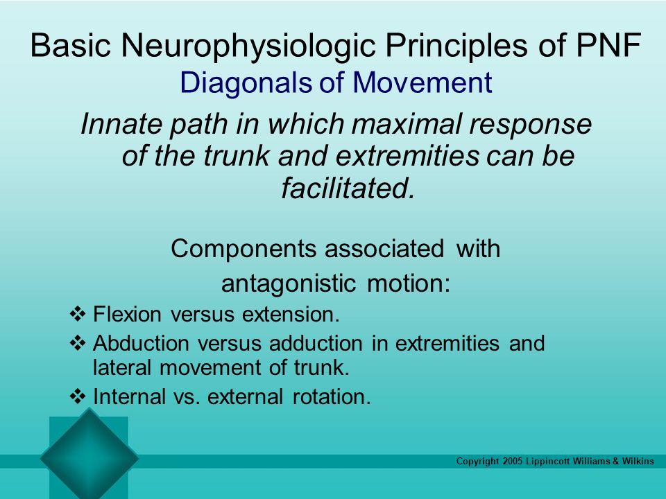 Basic Neurophysiologic Principles of PNF Diagonals of Movement