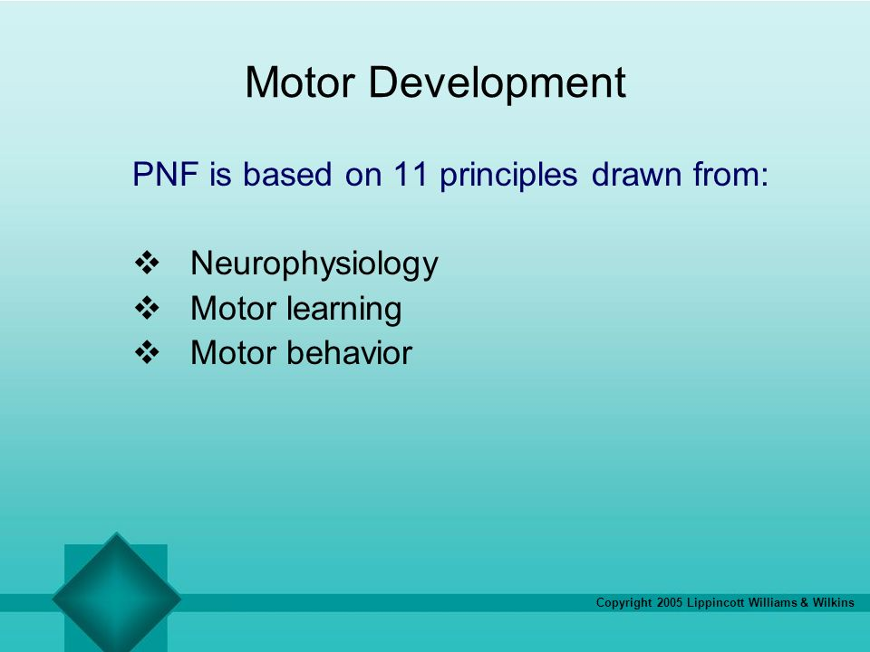 Motor Development PNF is based on 11 principles drawn from: