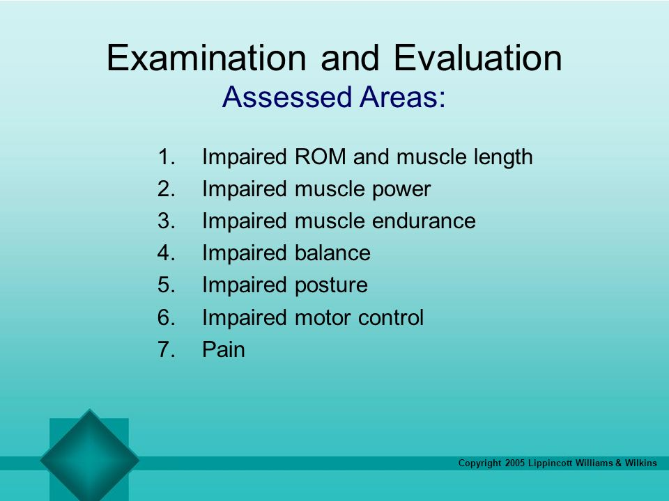Examination and Evaluation Assessed Areas: