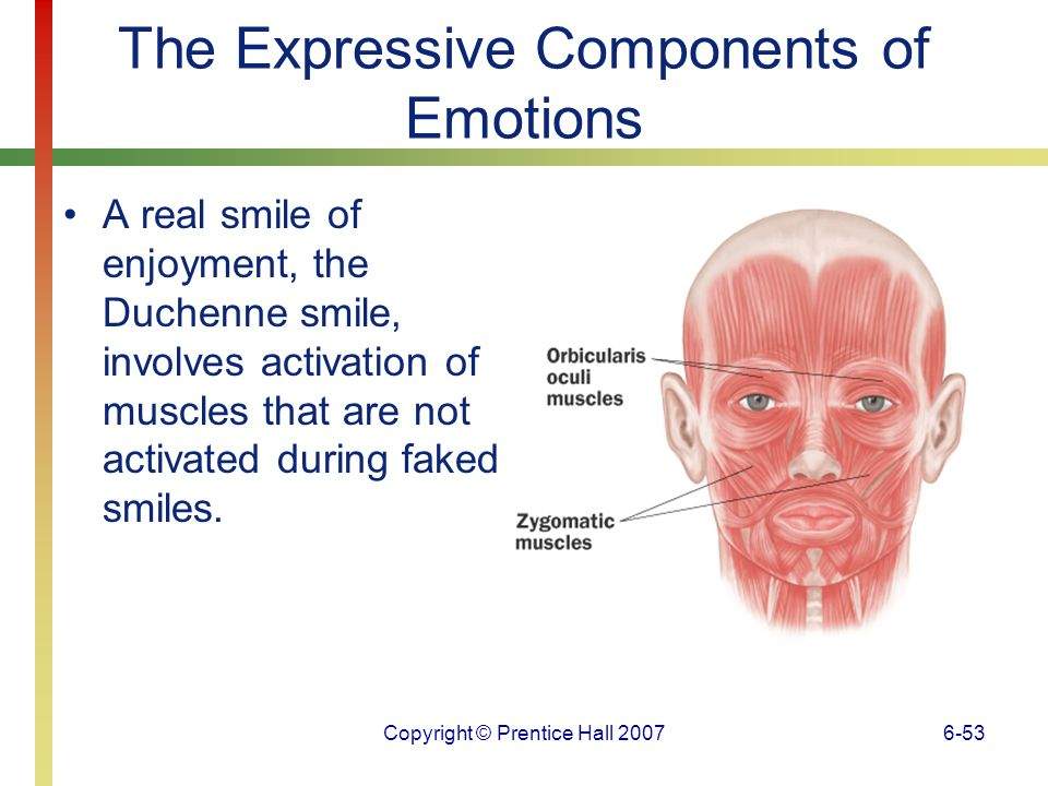 The Expressive Components of Emotions