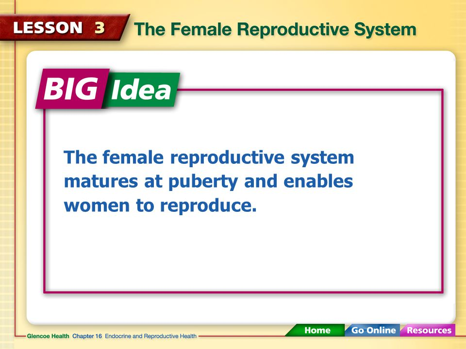 The female reproductive system matures at puberty and enables women to reproduce.