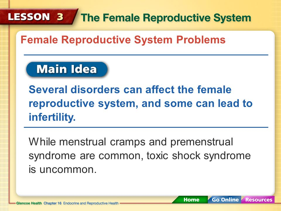 Female Reproductive System Problems