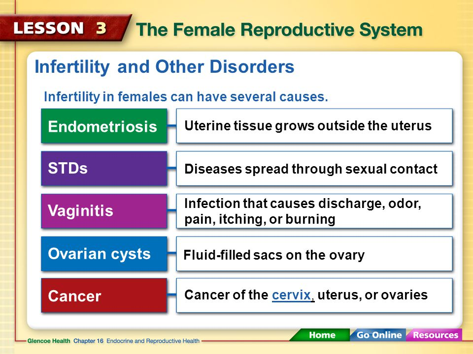 Infertility and Other Disorders