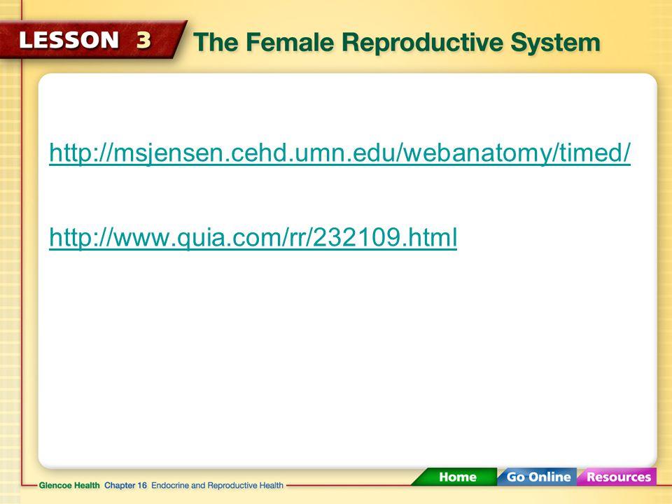 http://msjensen.cehd.umn.edu/webanatomy/timed/ http://www.quia.com/rr/232109.html