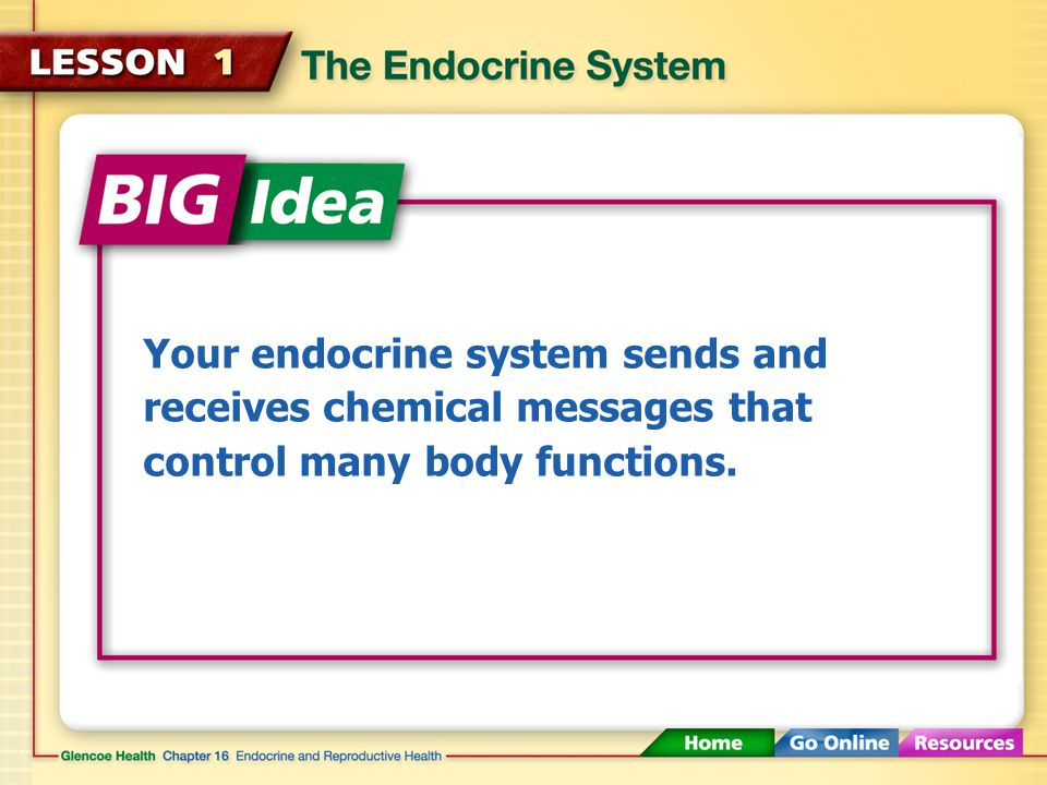 Your endocrine system sends and receives chemical messages that control many body functions.