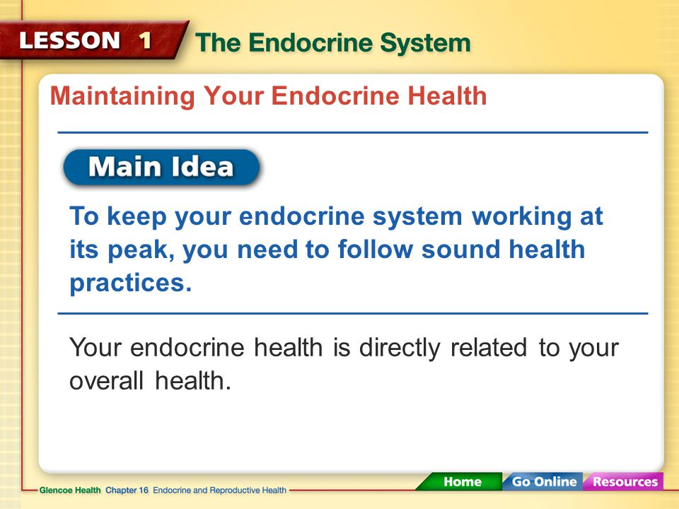 Maintaining Your Endocrine Health