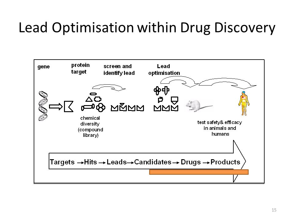 Lead Optimisation within Drug Discovery