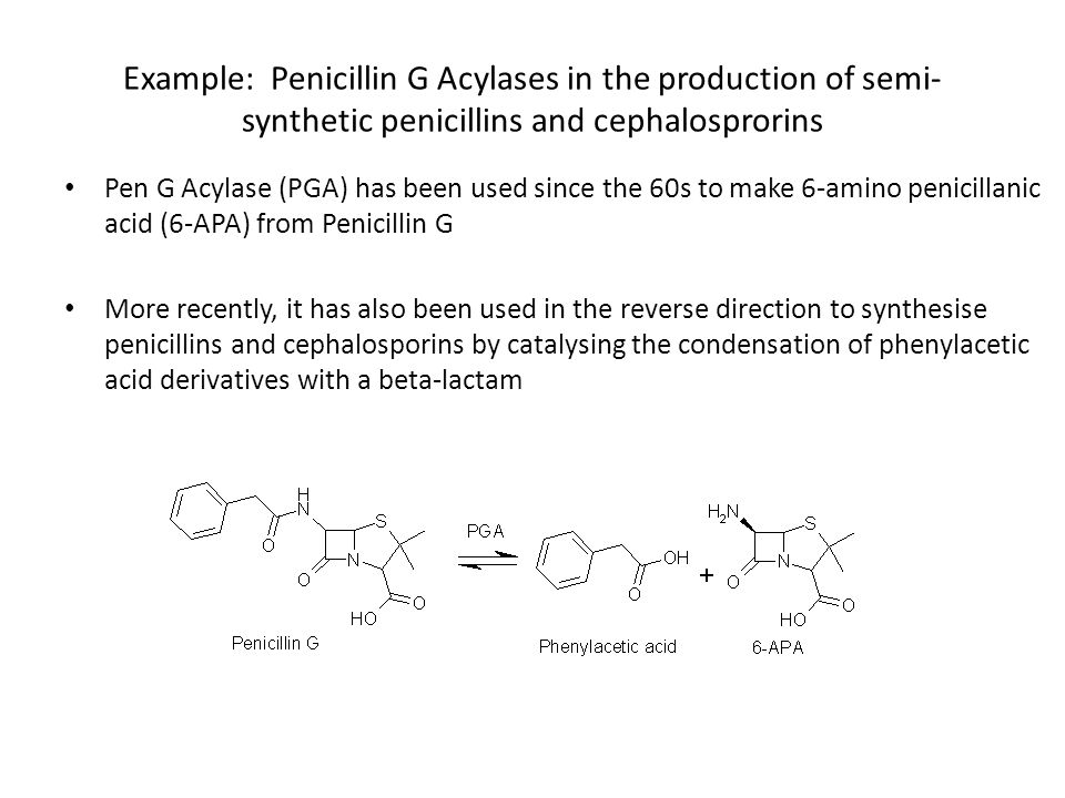 Example: Penicillin G Acylases in the production of semi-synthetic penicillins and cephalosprorins
