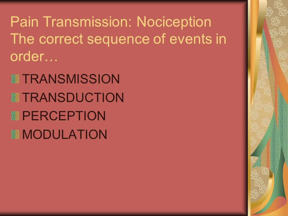 Pain Transmission: Nociception The correct sequence of events in order…
