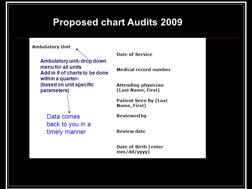 Proposed chart Audits 2009 Data comes back to you in a timely manner