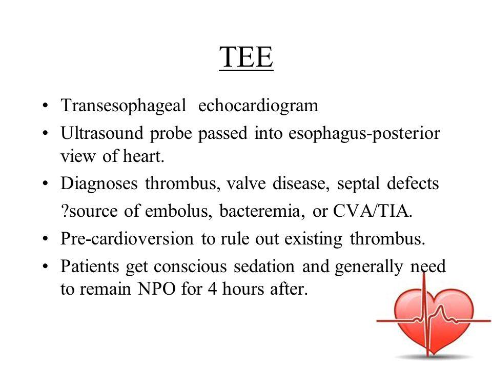 TEE Transesophageal echocardiogram