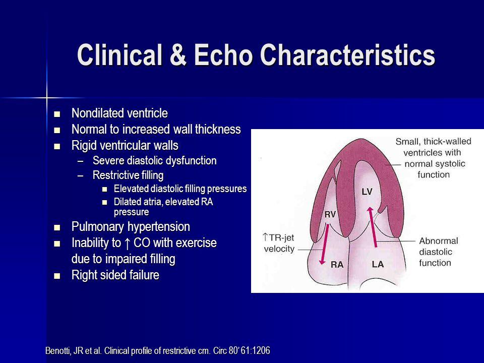 Clinical & Echo Characteristics
