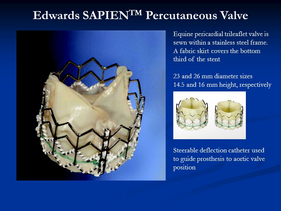 Edwards SAPIENTM Percutaneous Valve
