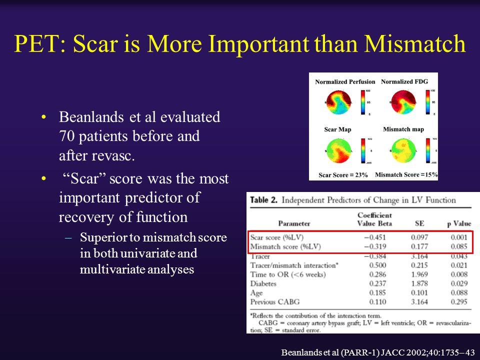 PET: Scar is More Important than Mismatch