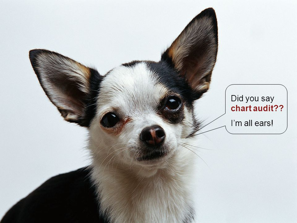 Did you say chart audit I'm all ears!