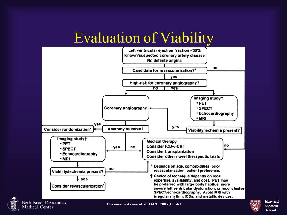 Evaluation of Viability