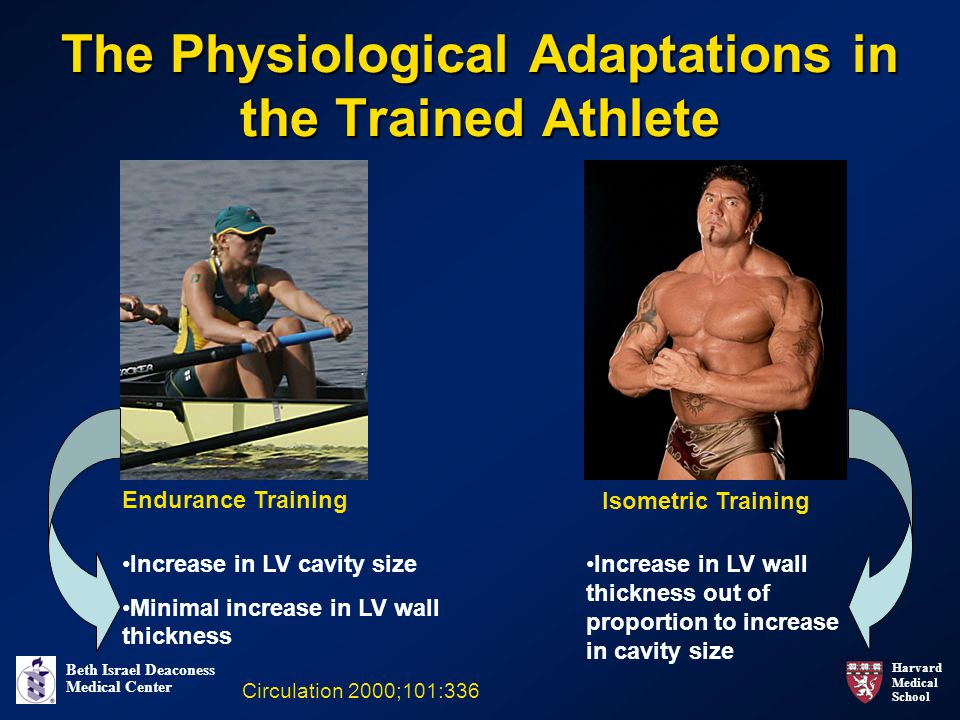 The Physiological Adaptations in the Trained Athlete