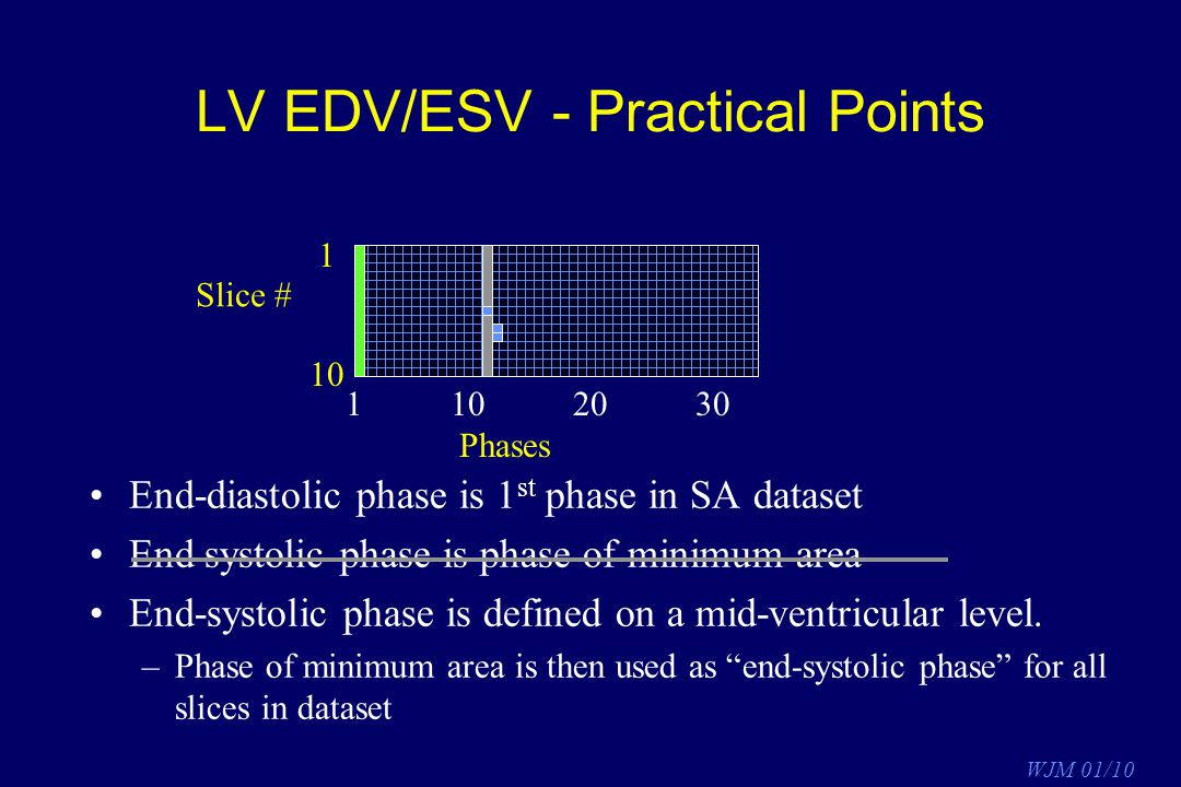 LV EDV/ESV - Practical Points