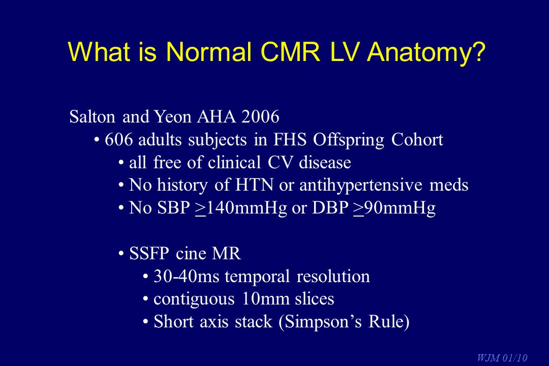What is Normal CMR LV Anatomy