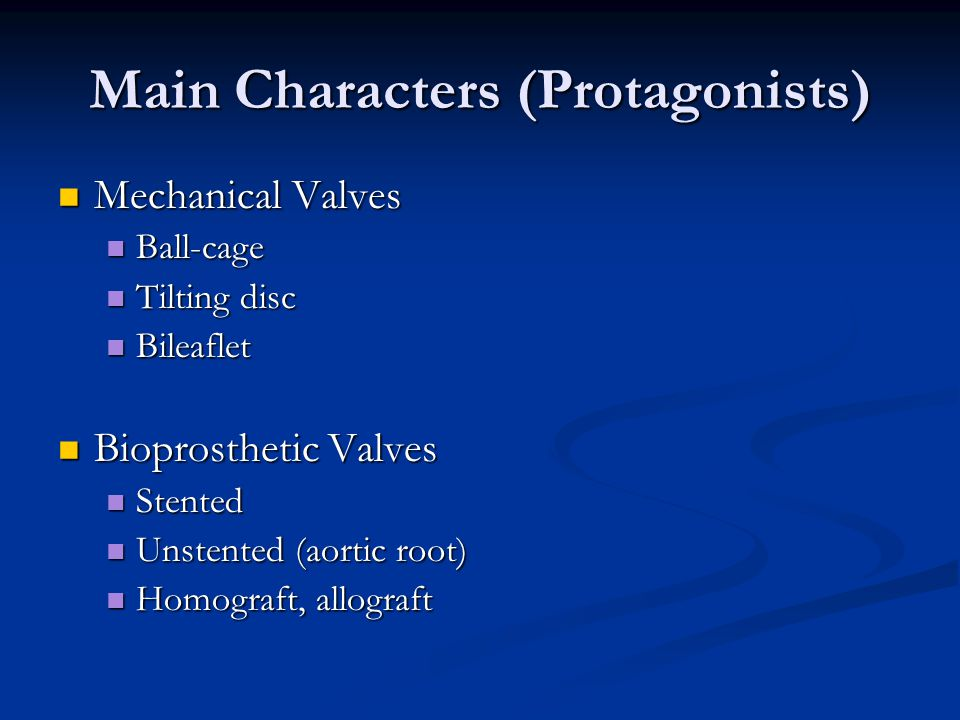 Main Characters (Protagonists)