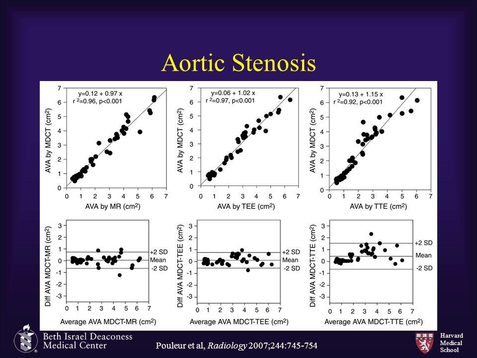 Pouleur et al, Radiology 2007;244:745-754