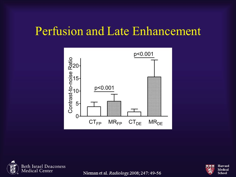 Perfusion and Late Enhancement