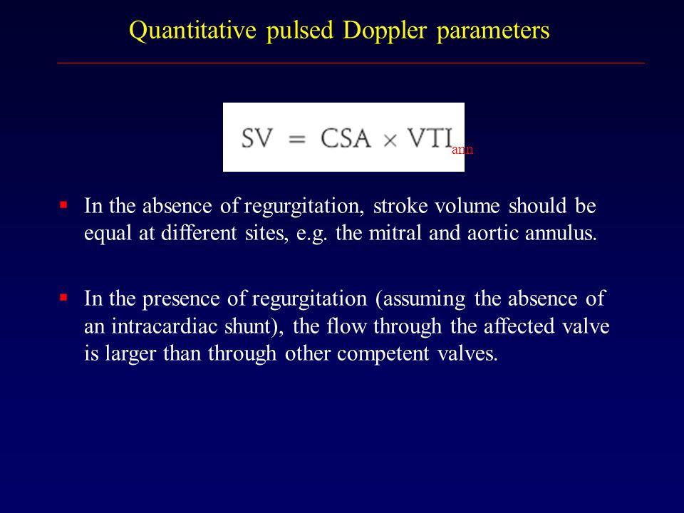 Quantitative pulsed Doppler parameters