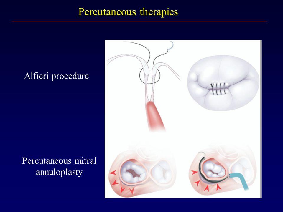 Percutaneous therapies