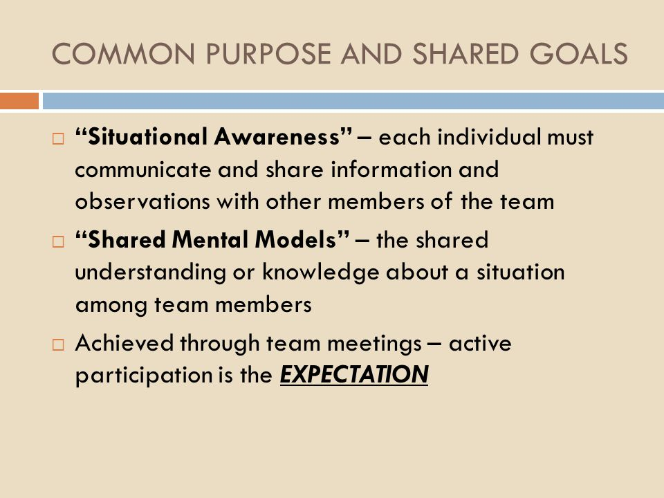 COMMON PURPOSE AND SHARED GOALS