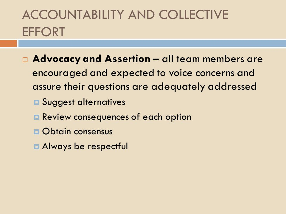 ACCOUNTABILITY AND COLLECTIVE EFFORT