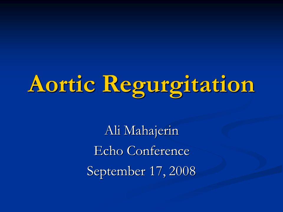 Ali Mahajerin Echo Conference September 17, 2008