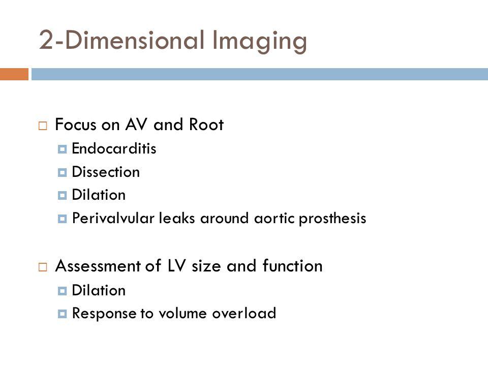 2-Dimensional Imaging Focus on AV and Root