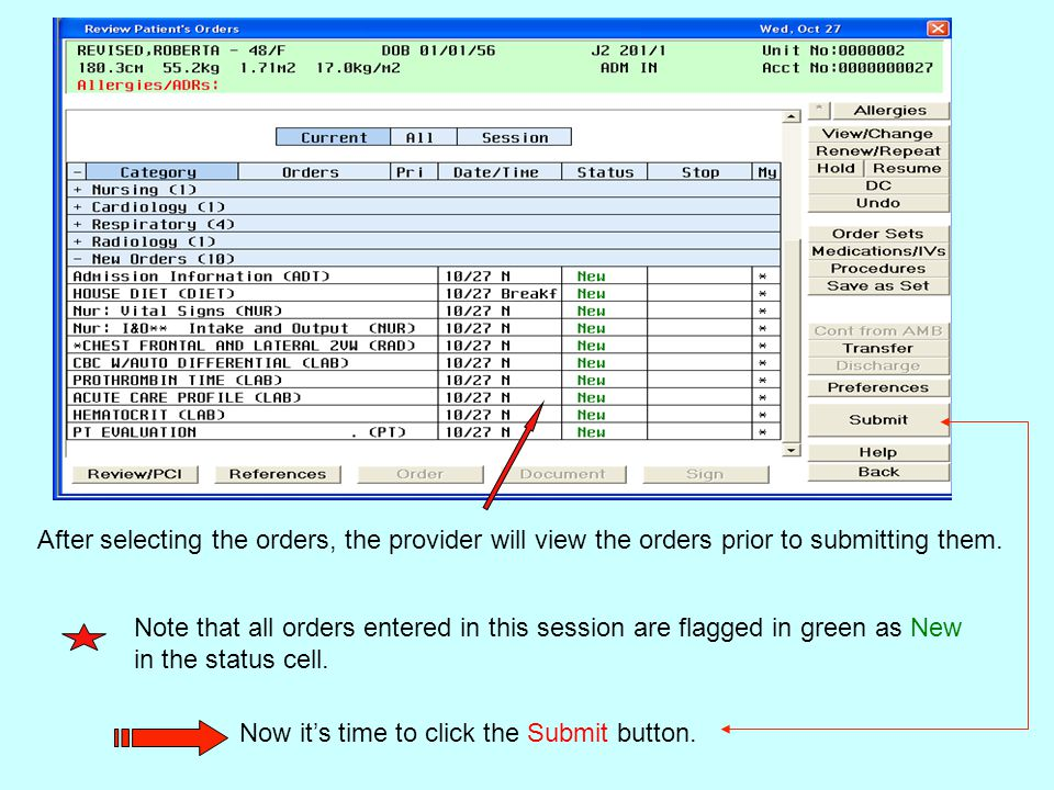 After selecting the orders, the provider will view the orders prior to submitting them.
