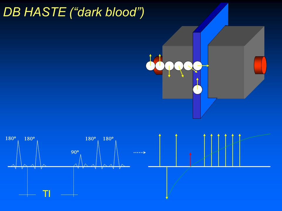 DB HASTE ( dark blood )