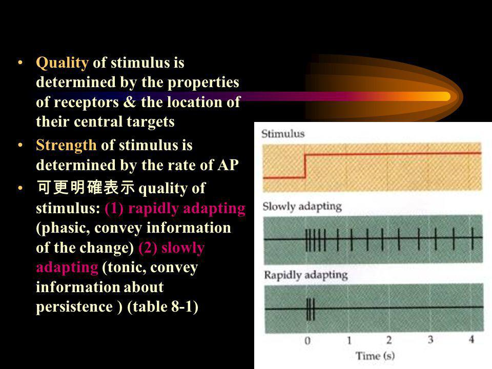 Quality of stimulus is determined by the properties of receptors & the location of their central targets