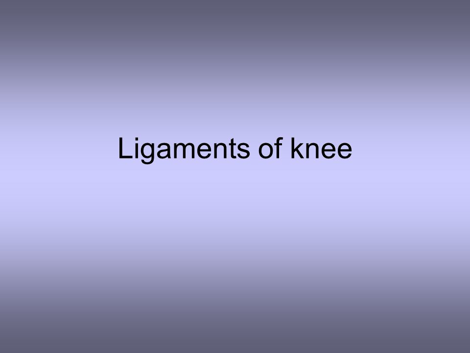 Ligaments of knee