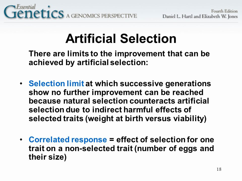 Artificial Selection There are limits to the improvement that can be achieved by artificial selection: