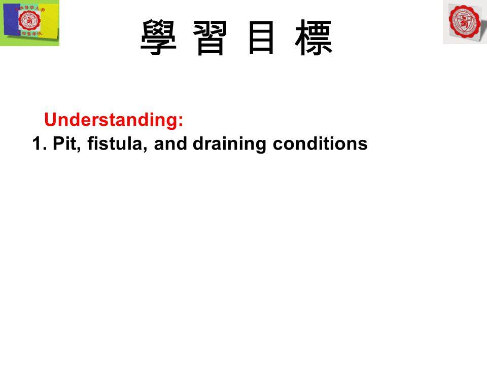 學 習 目 標 Understanding: 1. Pit, fistula, and draining conditions
