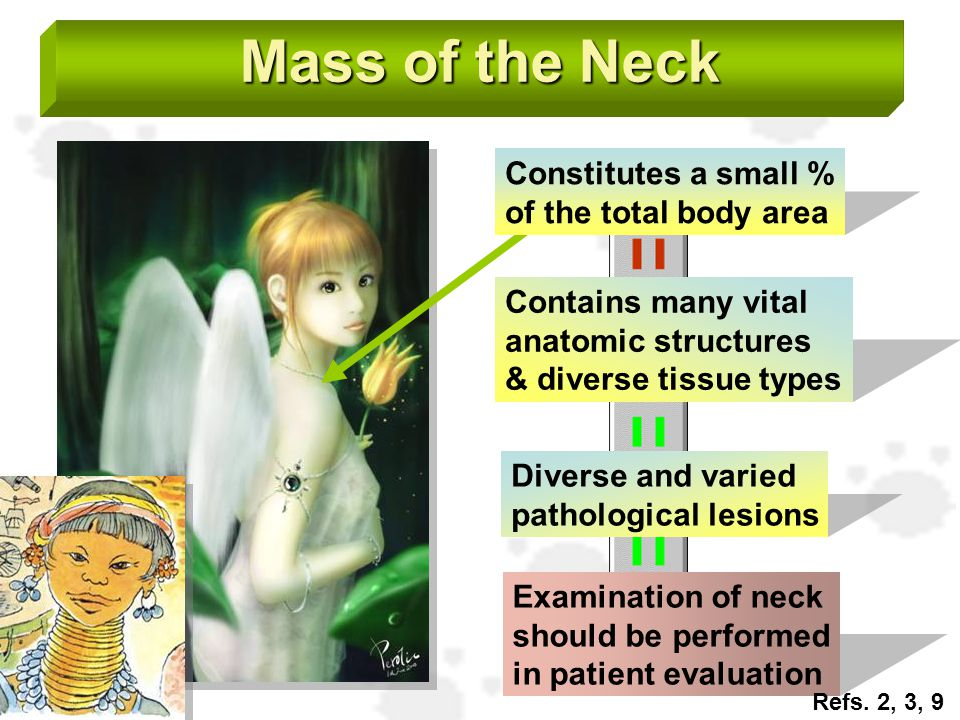 Mass of the Neck Constitutes a small % of the total body area