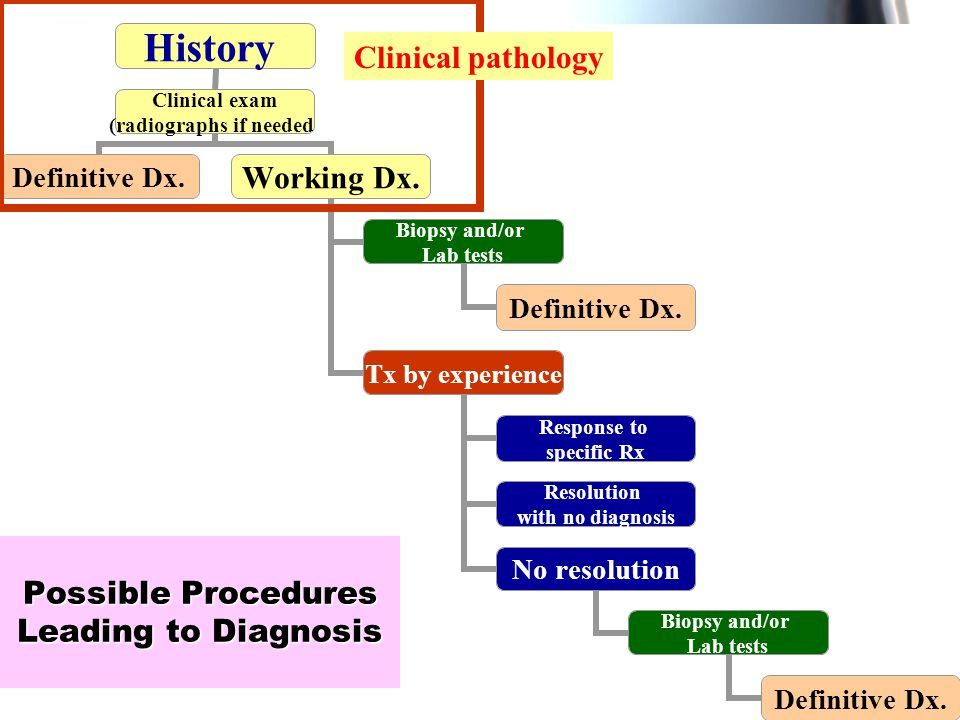 Possible Procedures Leading to Diagnosis